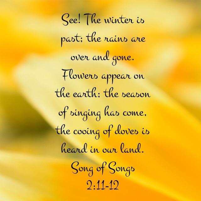 The Season of Singing