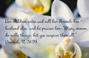 Proverbs 31:28-29